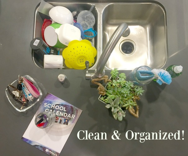 clean-and-organized-sink-area
