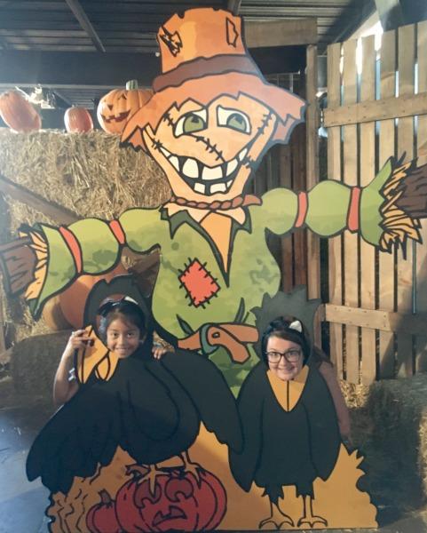 knotts-spooky-farm-maze-photo