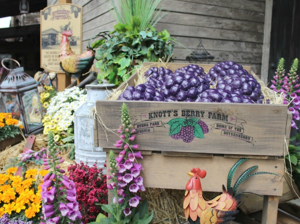 knotts-boysenberry-festival-decor
