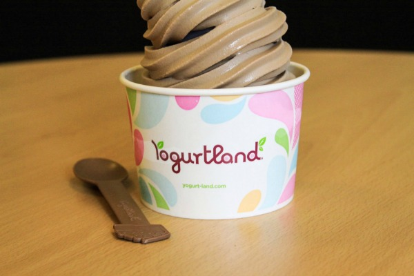 yogurtland-larger-than-life-mud-pie